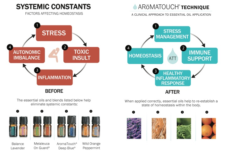 before-after-aromatouch